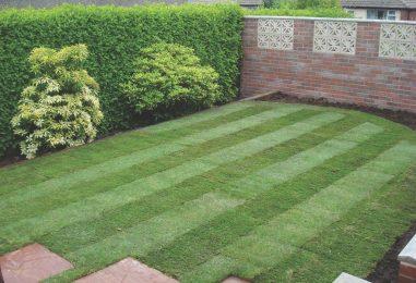 Landscaping Milton Keynes